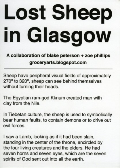 "Title: ""Sheep Information Card"" (Back) Media: Photograph on Card Dimensions: 5"" x 7"""